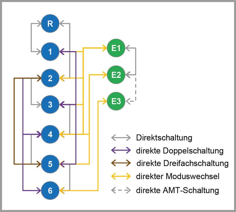 Ausgezeichnet Deutsch Drahthaarzeiger Rettung Galerie - Der ...